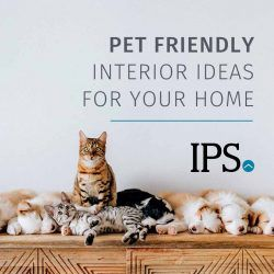 Pet Friendly Interior Ideas for Your Home